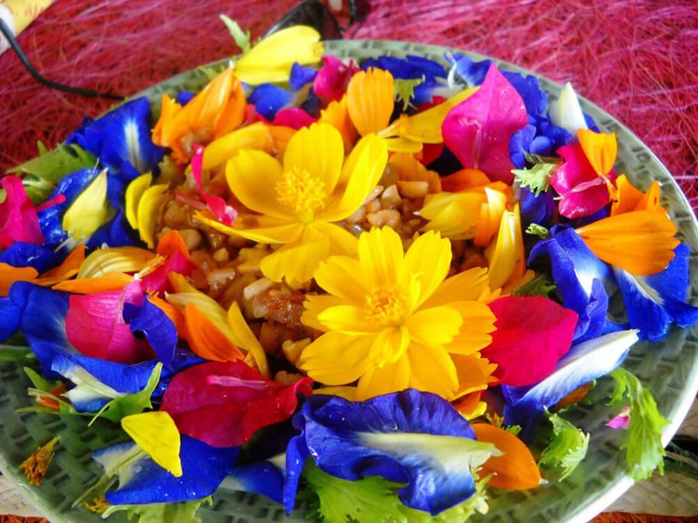 prato-de-flores-1024x768