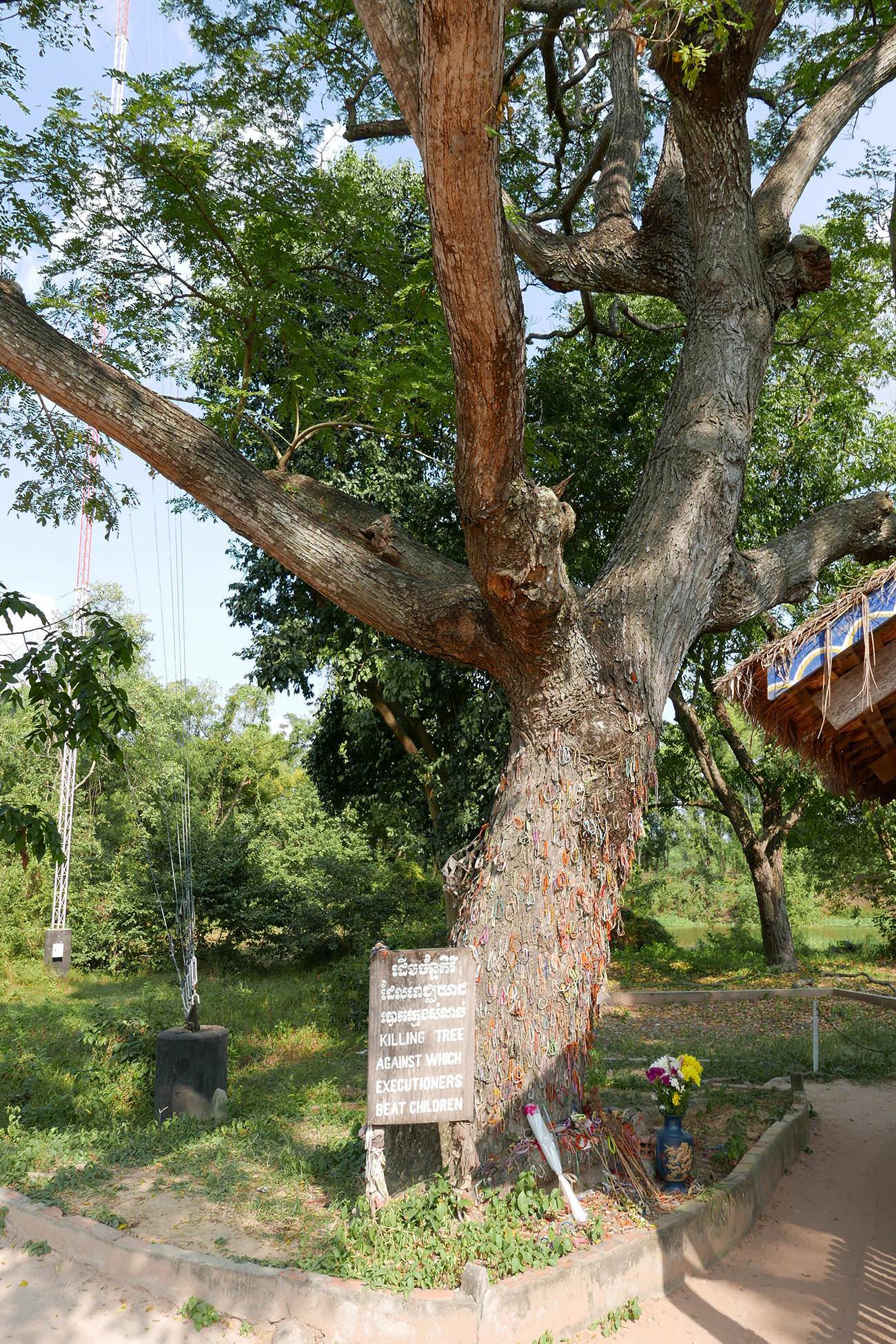 キリングフィールド・大量埋葬地キリングツリー